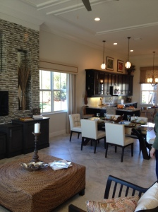 Almaden Family room